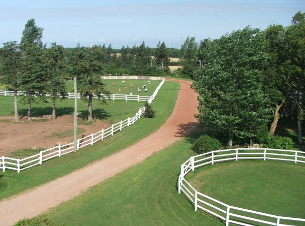 Roundpen and paddocks